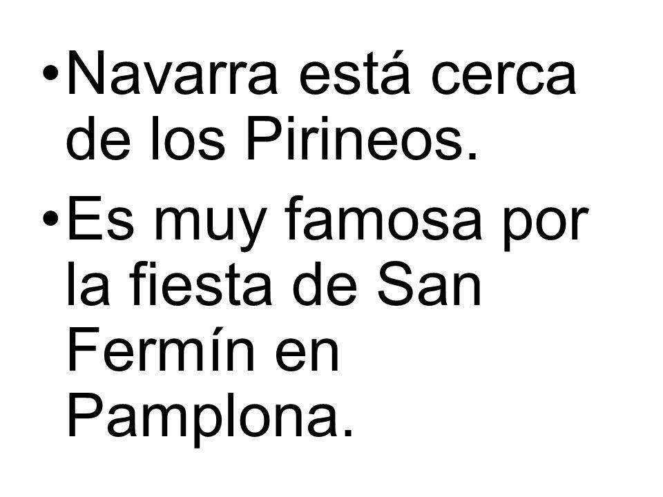 Navarra está cerca de los Pirineos. Es muy famosa por la fiesta de San Fermín en Pamplona.
