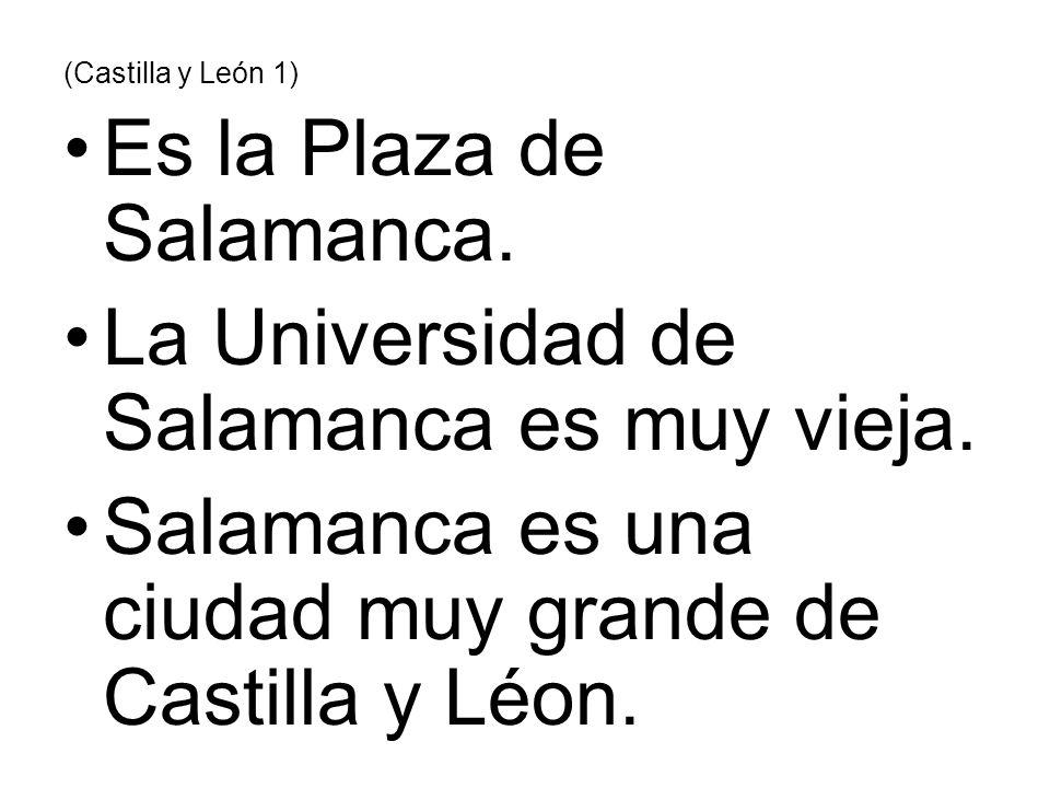 (Castilla y León 1) Es la Plaza de Salamanca. La Universidad de Salamanca es muy vieja. Salamanca es una ciudad muy grande de Castilla y Léon.