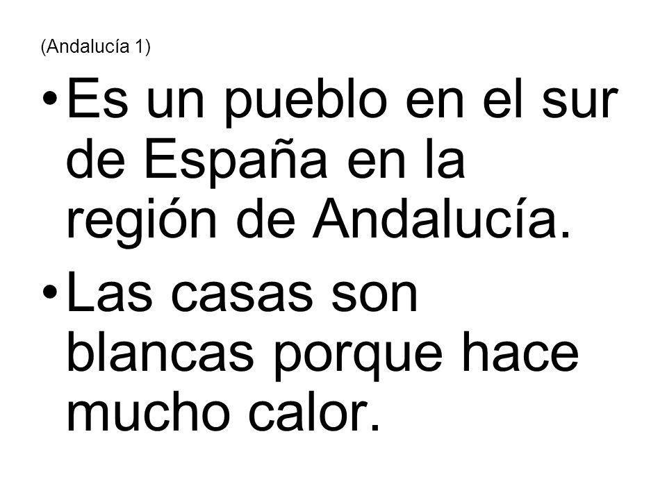 (Andalucía 1) Es un pueblo en el sur de España en la región de Andalucía. Las casas son blancas porque hace mucho calor.