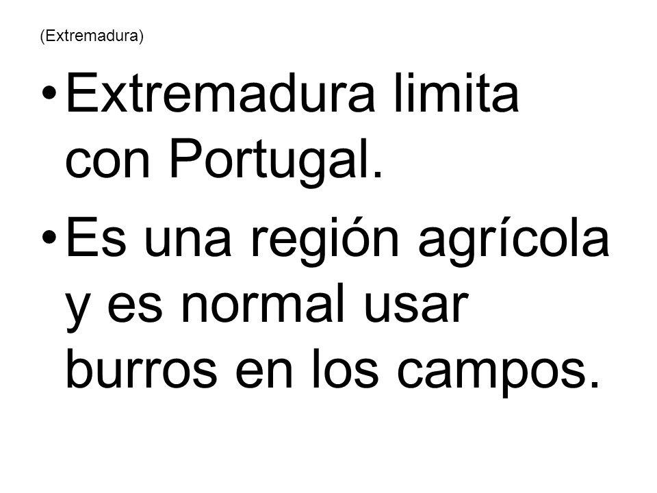 (Extremadura) Extremadura limita con Portugal. Es una región agrícola y es normal usar burros en los campos.