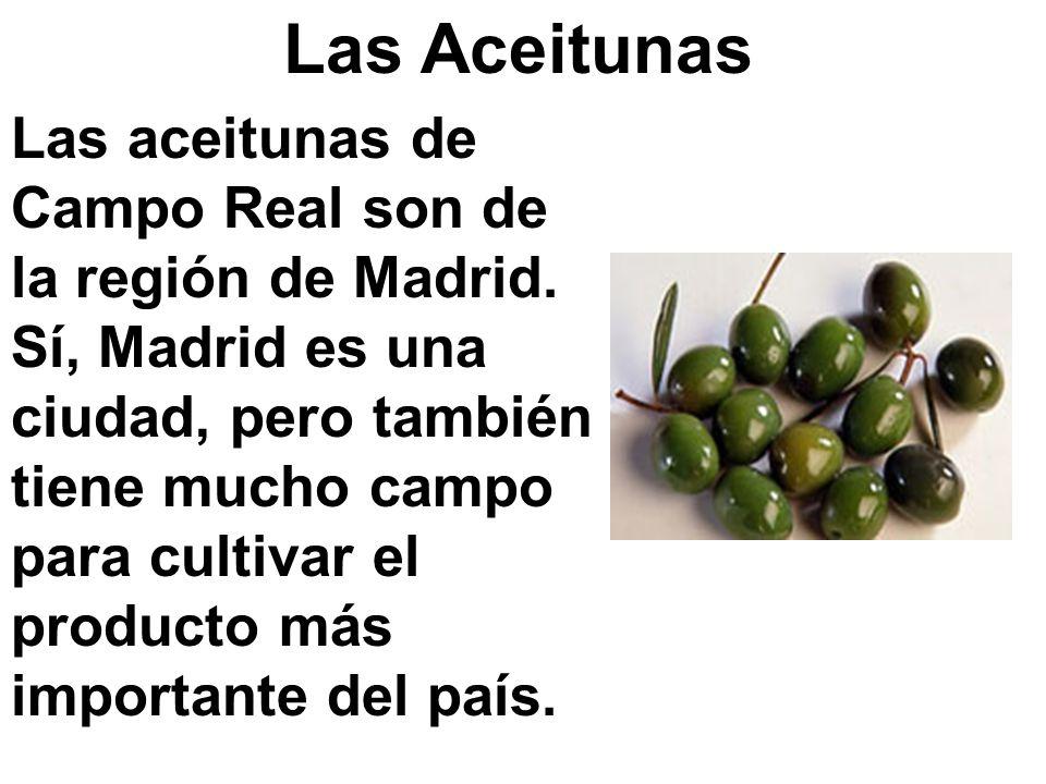 Las Aceitunas Las aceitunas de Campo Real son de la región de Madrid. Sí, Madrid es una ciudad, pero también tiene mucho campo para cultivar el produc