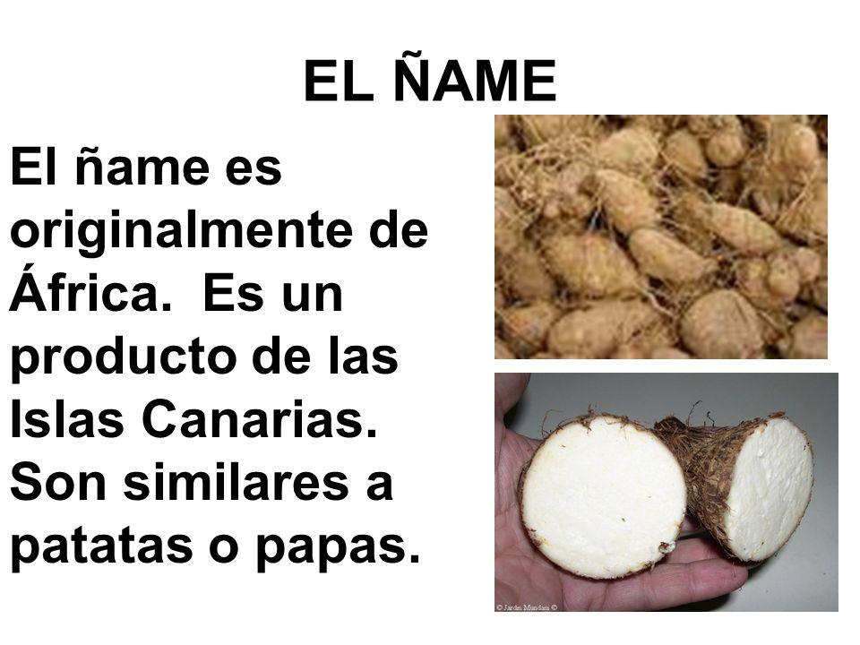 EL ÑAME El ñame es originalmente de África. Es un producto de las Islas Canarias. Son similares a patatas o papas.