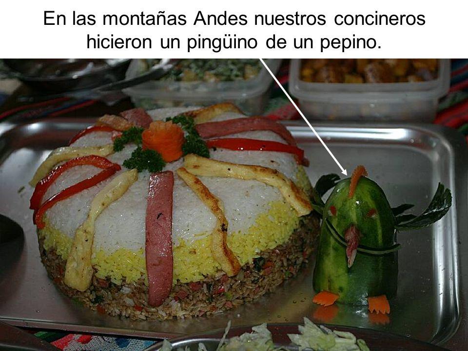 En las montañas Andes nuestros concineros hicieron un pingüino de un pepino.