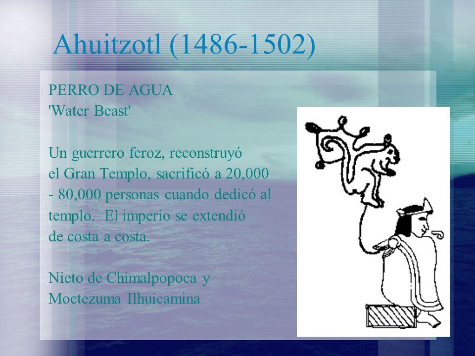 Ahuitzotl (1486-1502) PERRO DE AGUA 'Water Beast' Un guerrero feroz, reconstruyó el Gran Templo, sacrificó a 20,000 - 80,000 personas cuando dedicó al