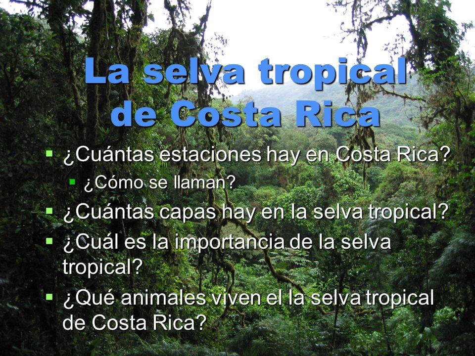 La selva tropical de Costa Rica ¿Cuántas estaciones hay en Costa Rica? ¿Cuántas estaciones hay en Costa Rica? ¿Cómo se llaman? ¿Cómo se llaman? ¿Cuánt
