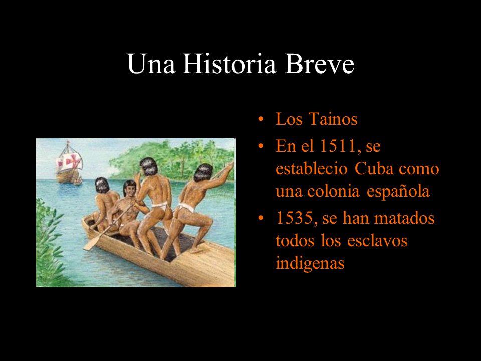Una Historia Breve Los Tainos En el 1511, se establecio Cuba como una colonia española 1535, se han matados todos los esclavos indigenas