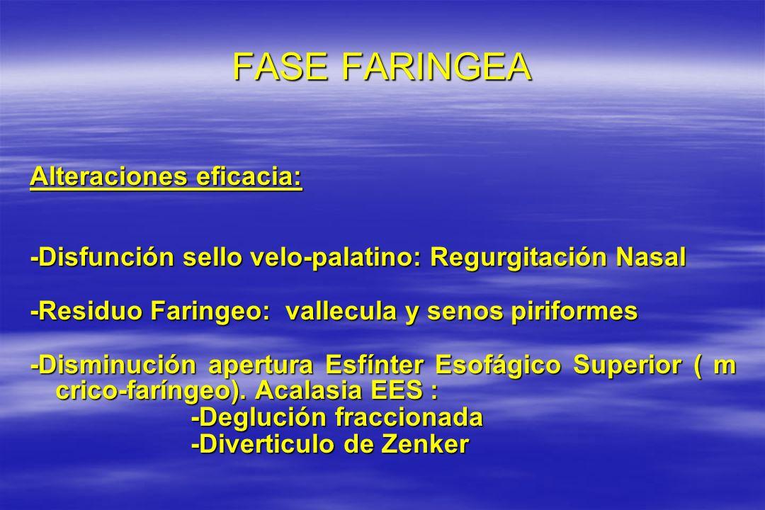 FASE FARINGEA Alteraciones eficacia: -Disfunción sello velo-palatino: Regurgitación Nasal -Residuo Faringeo: vallecula y senos piriformes -Disminución