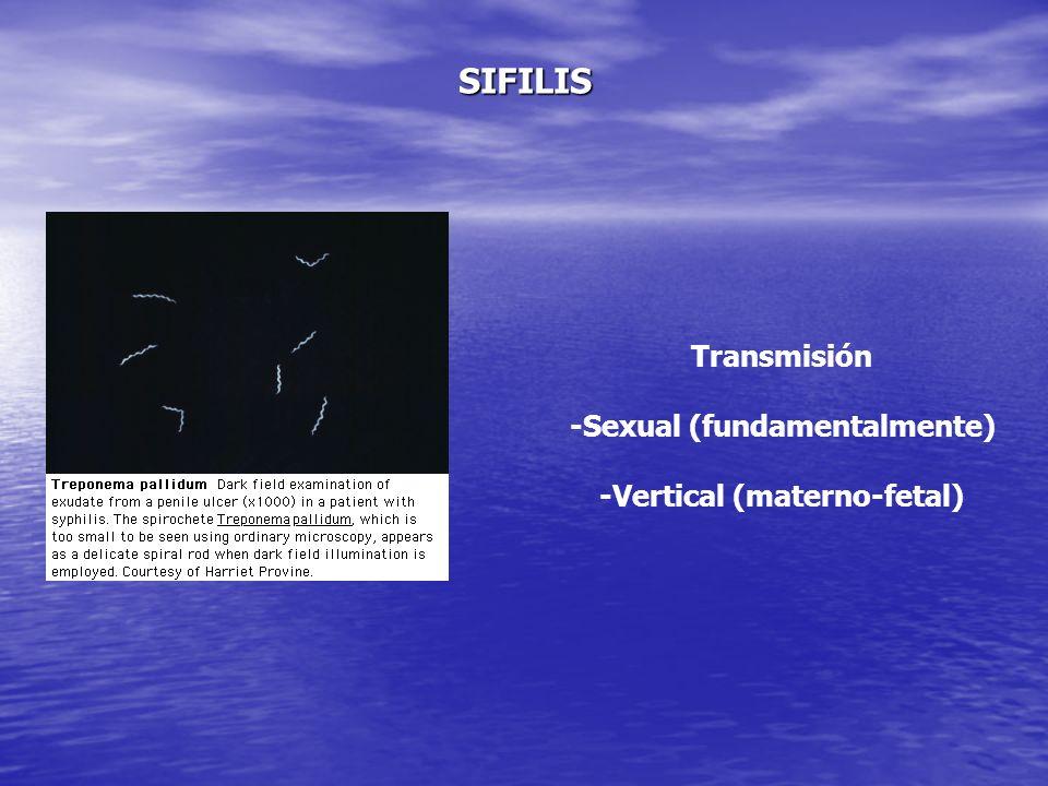 Pruebas de Laboratorio Serología Luética RPR: 1/32 T.P.H.A.: positivo. RPR: 1/32 T.P.H.A.: positivo. SIFILIS SECUNDARIA