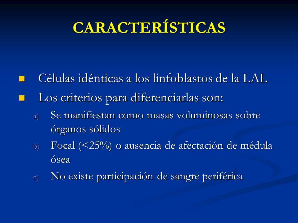 CARACTERÍSTICAS Células idénticas a los linfoblastos de la LAL Células idénticas a los linfoblastos de la LAL Los criterios para diferenciarlas son: L