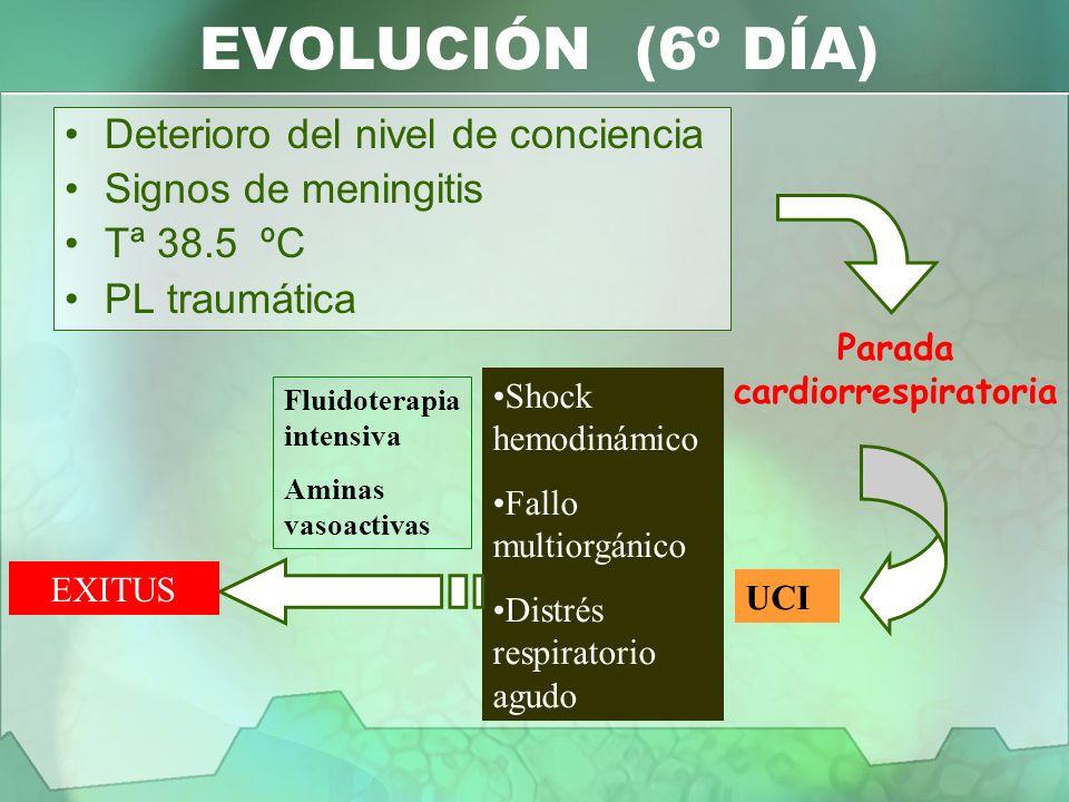 EVOLUCIÓN (6º DÍA) Deterioro del nivel de conciencia Signos de meningitis Tª 38.5 ºC PL traumática Parada cardiorrespiratoria UCI Shock hemodinámico F