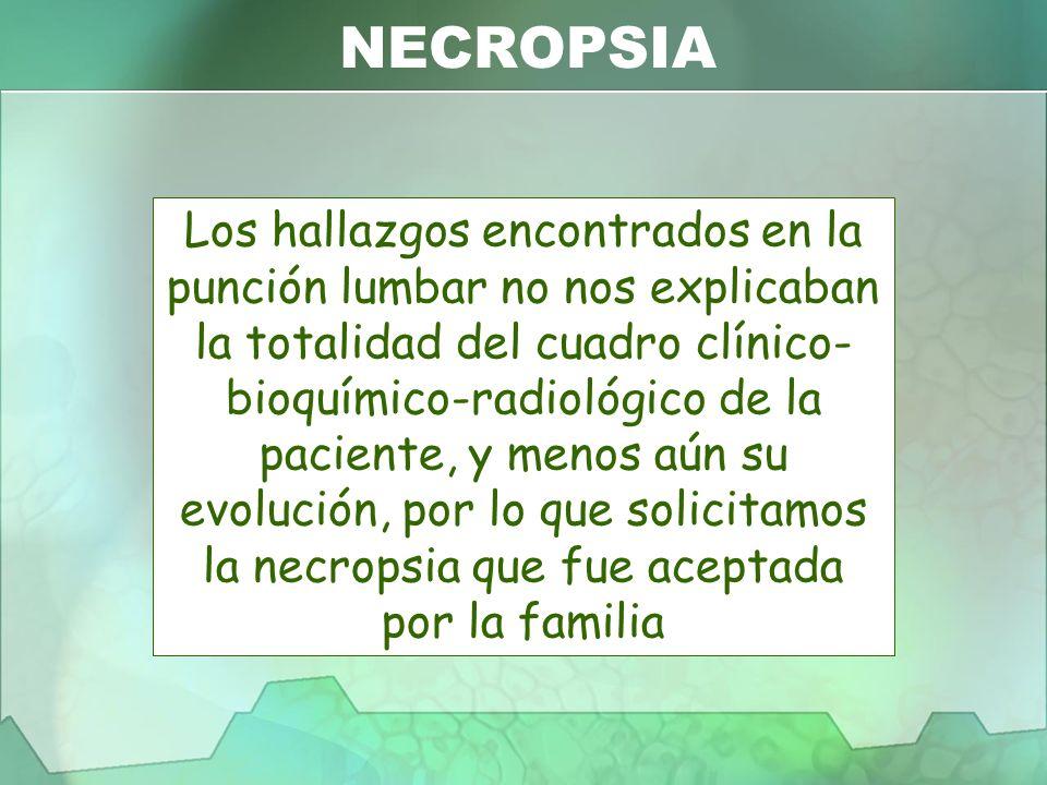 NECROPSIA Los hallazgos encontrados en la punción lumbar no nos explicaban la totalidad del cuadro clínico- bioquímico-radiológico de la paciente, y m