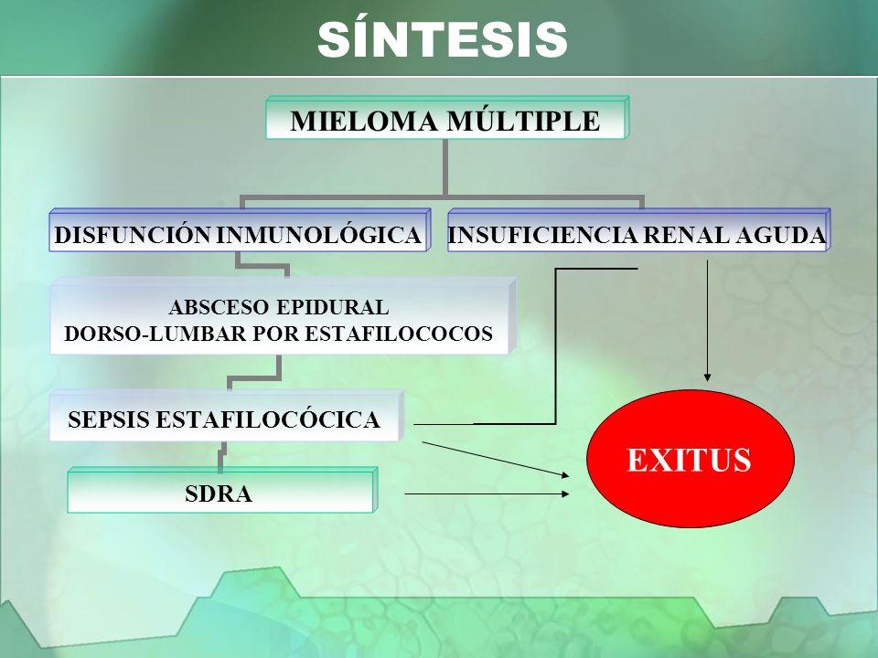 SÍNTESIS EXITUS