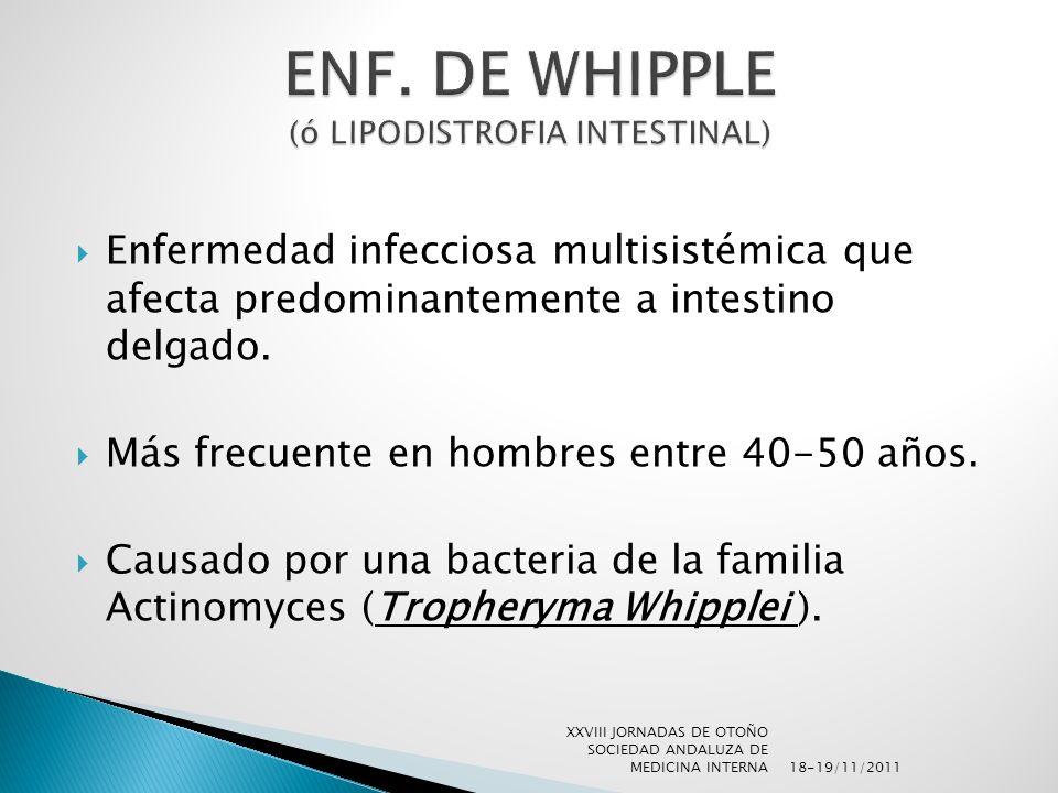 Enfermedad infecciosa multisistémica que afecta predominantemente a intestino delgado. Más frecuente en hombres entre 40-50 años. Causado por una bact