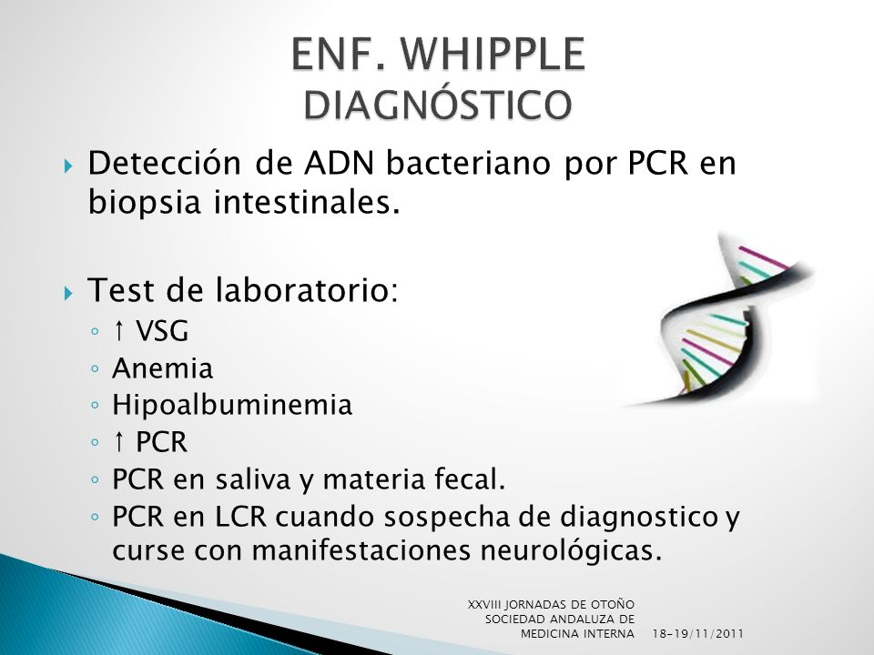 Detección de ADN bacteriano por PCR en biopsia intestinales. Test de laboratorio: VSG Anemia Hipoalbuminemia PCR PCR en saliva y materia fecal. PCR en