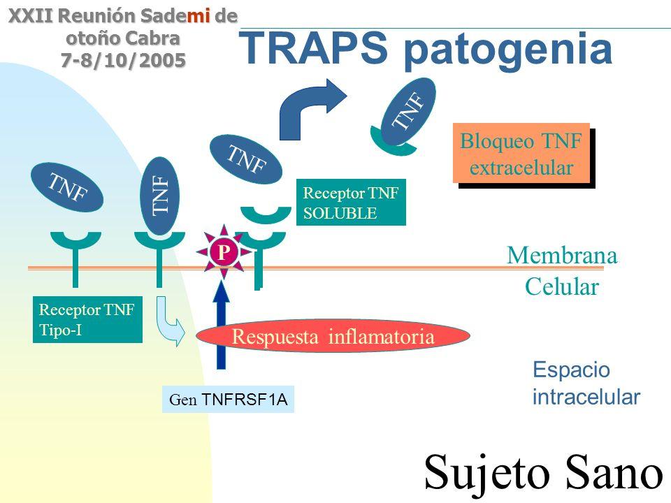 Saltar a la primera página XXII Reunión Sademi de otoño Cabra 7-8/10/2005 TRAPS patogenia Membrana Celular TNF Respuesta inflamatoria Receptor TNF Tip