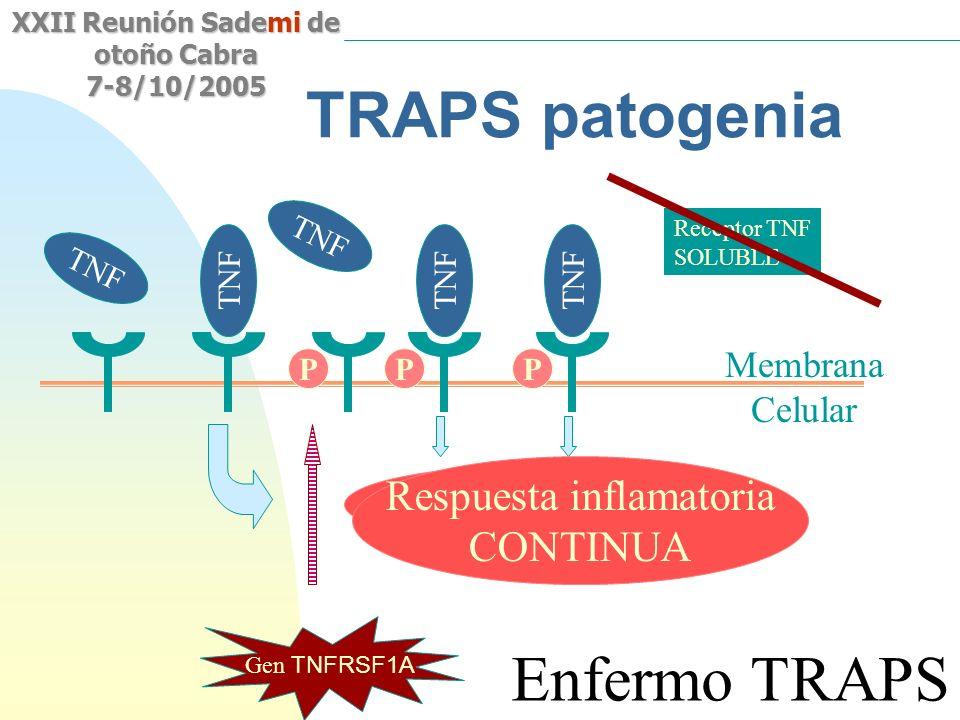 Saltar a la primera página XXII Reunión Sademi de otoño Cabra 7-8/10/2005 TRAPS patogenia Membrana Celular TNF Respuesta inflamatoria TNF Gen TNFRSF1A