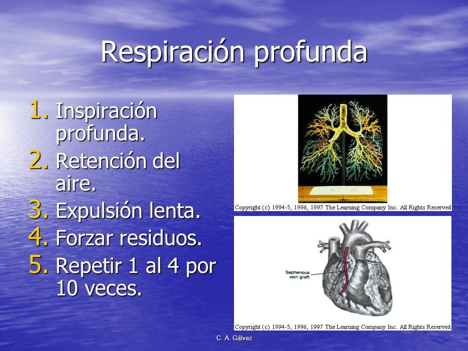 C. A. Gálvez Beneficios de la practica de respiración profunda Purificación de la sangre. Purificación de la sangre. Producción optima de energía. Pro