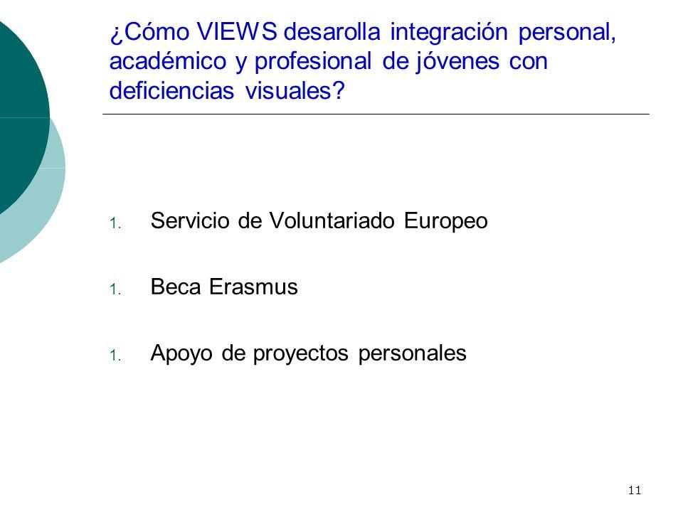 11 ¿Cómo VIEWS desarolla integración personal, académico y profesional de jóvenes con deficiencias visuales.