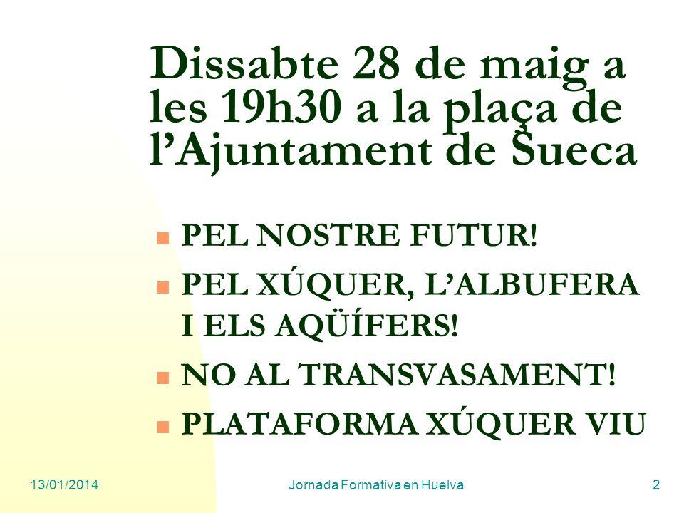 13/01/2014Jornada Formativa en Huelva2 Dissabte 28 de maig a les 19h30 a la plaça de lAjuntament de Sueca PEL NOSTRE FUTUR! PEL XÚQUER, LALBUFERA I EL