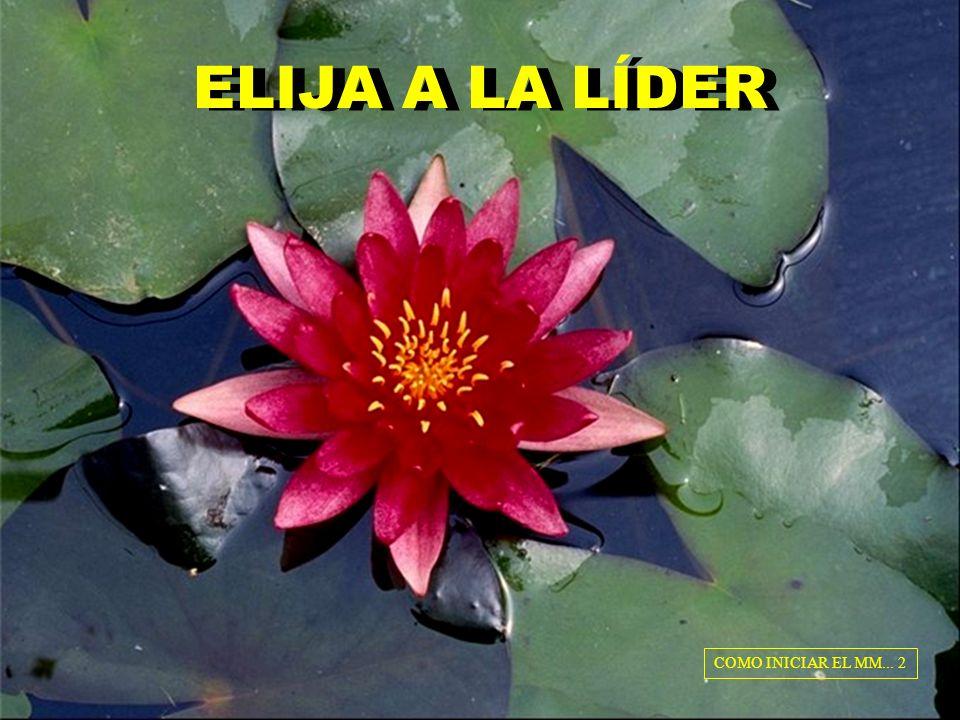 ELIJA A LA LÍDER COMO INICIAR EL MM... 2
