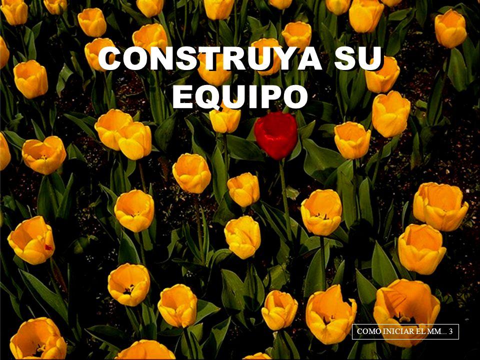 CONSTRUYA SU EQUIPO COMO INICIAR EL MM... 3