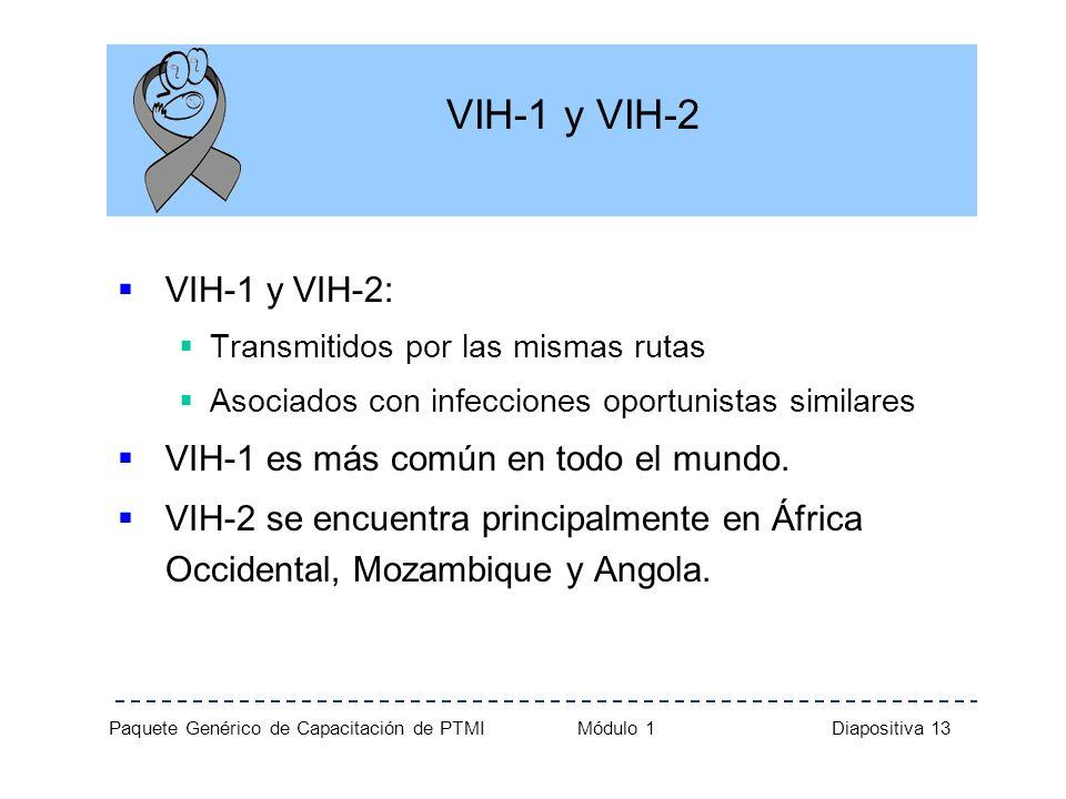 Paquete Genérico de Capacitación de PTMI Módulo 1 Diapositiva 13 VIH-1 y VIH-2 VIH-1 y VIH-2: Transmitidos por las mismas rutas Asociados con infeccio