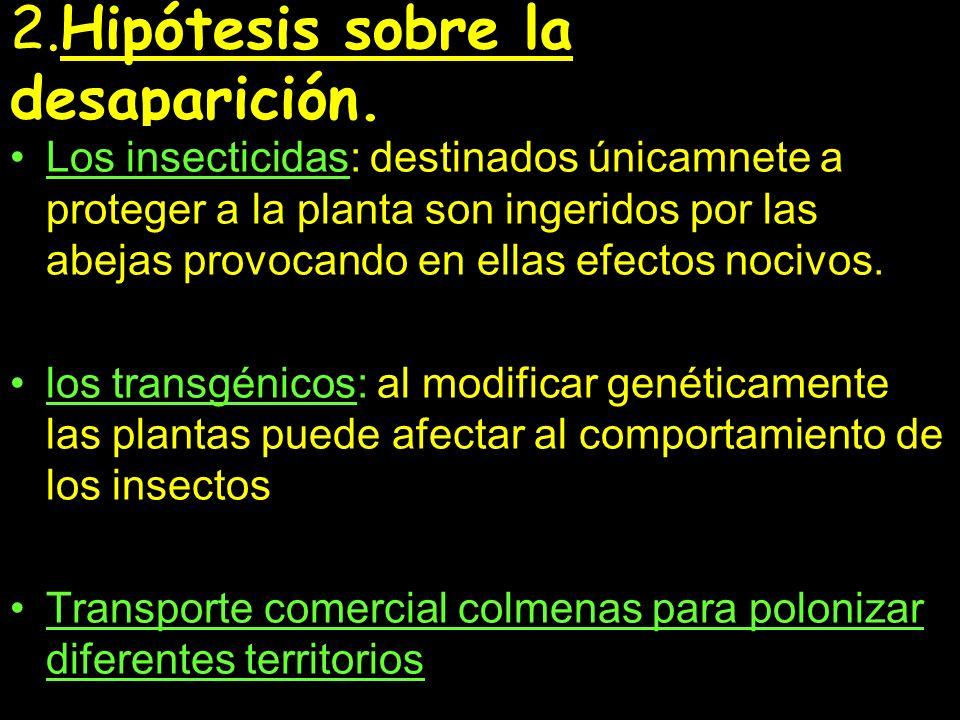 Bibliografía: www.espaciociencia.com www.apiservices.com/articulos/ecosistemas www.elmundo.es/suplementos/magazine www.Ine.es/secciones/noticia-sociedad-y- cultura-desaparecen-abejas.www.Ine.es/secciones/noticia-sociedad-y- cultura-desaparecen-abejas www.alertatierra.com/CambC0407