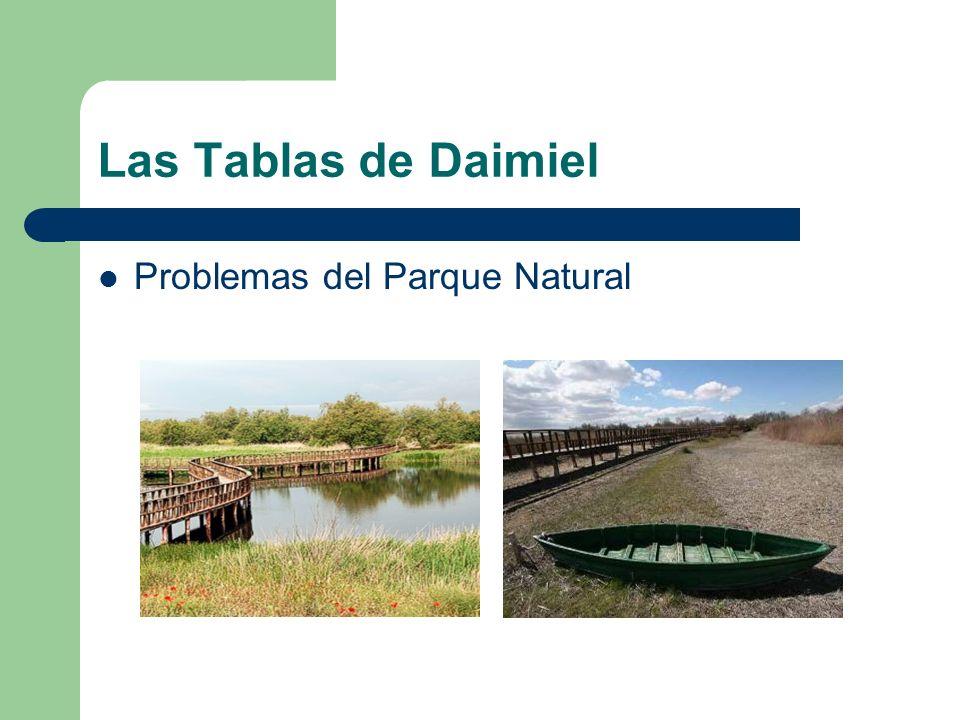 Las Tablas de Daimiel Problemas del Parque Natural
