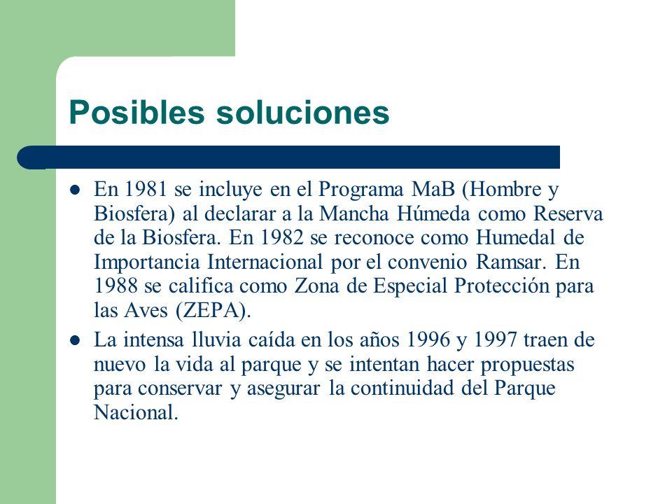 Posibles soluciones En 1981 se incluye en el Programa MaB (Hombre y Biosfera) al declarar a la Mancha Húmeda como Reserva de la Biosfera.