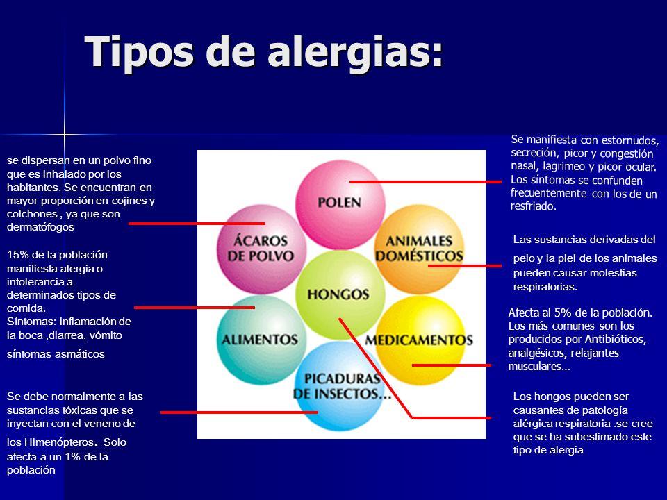 Todos Los Tipos De Alergias | MEJOR CONJUNTO DE FRASES