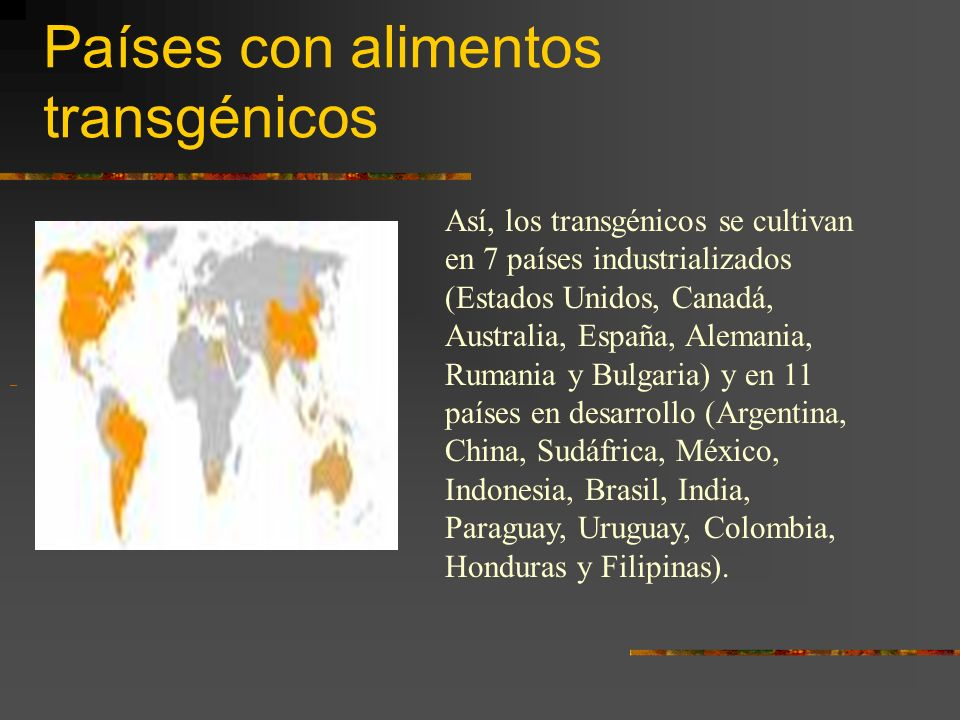 Países con alimentos transgénicos Así, los transgénicos se cultivan en 7 países industrializados (Estados Unidos, Canadá, Australia, España, Alemania,