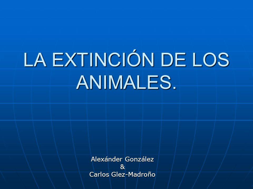 LA EXTINCIÓN DE LOS ANIMALES. Alexánder González & Carlos Glez-Madroño