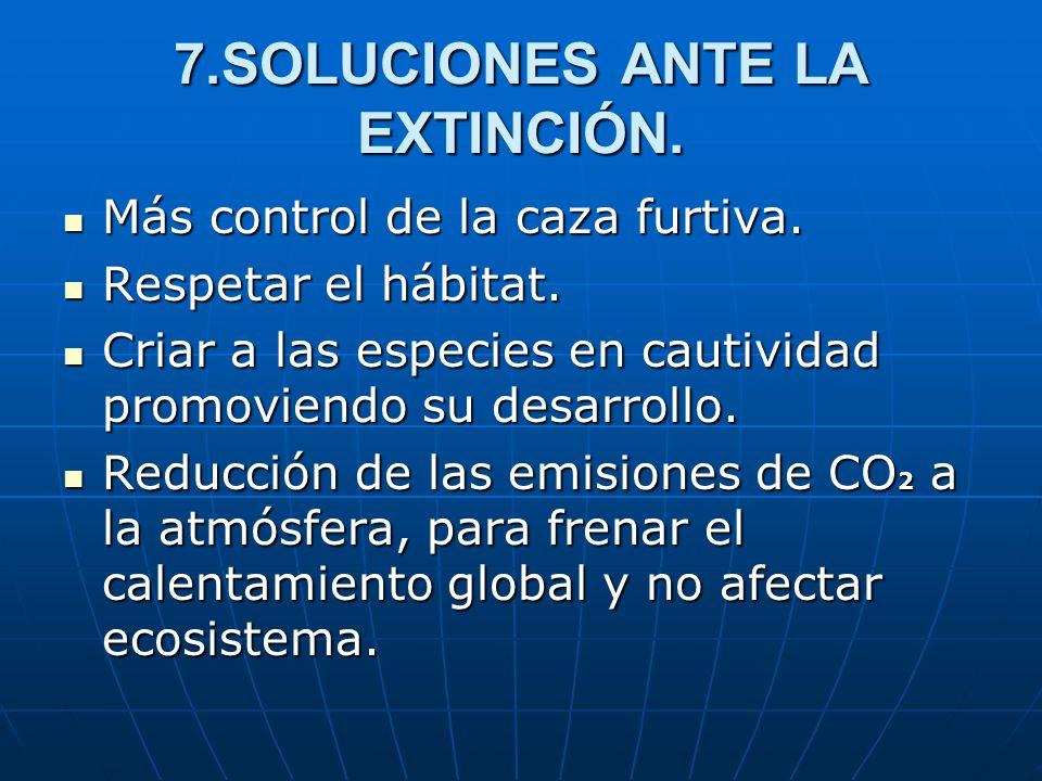 7.SOLUCIONES ANTE LA EXTINCIÓN. Más control de la caza furtiva. Más control de la caza furtiva. Respetar el hábitat. Respetar el hábitat. Criar a las