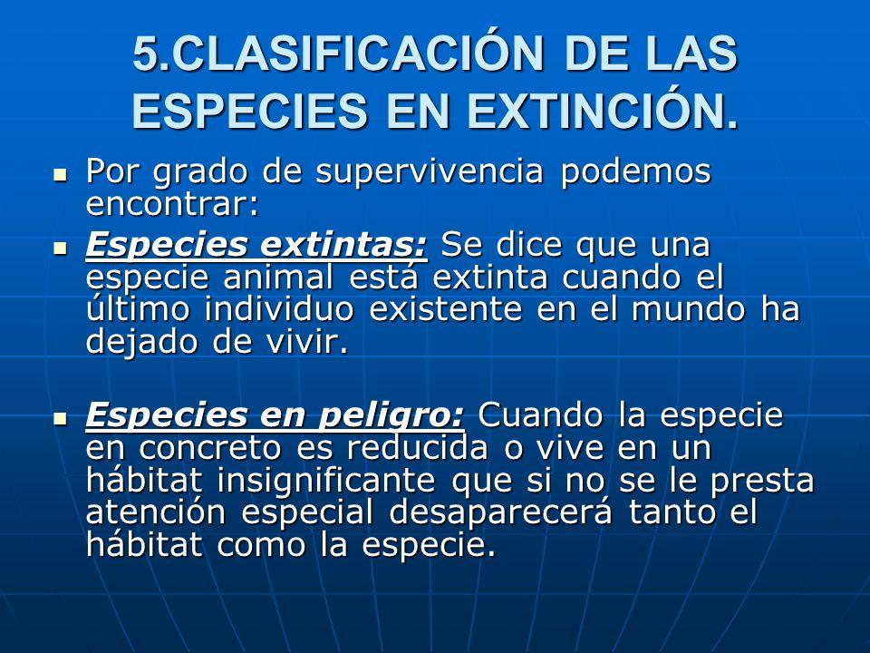 5.CLASIFICACIÓN DE LAS ESPECIES EN EXTINCIÓN. Por grado de supervivencia podemos encontrar: Por grado de supervivencia podemos encontrar: Especies ext