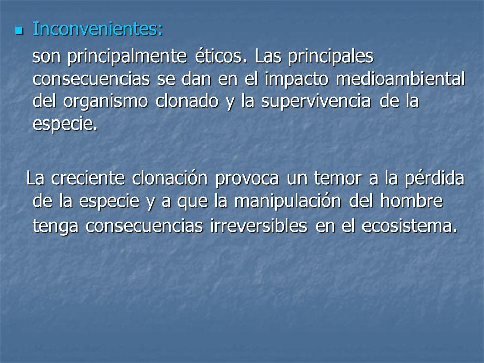 Inconvenientes: Inconvenientes: son principalmente éticos. Las principales consecuencias se dan en el impacto medioambiental del organismo clonado y l