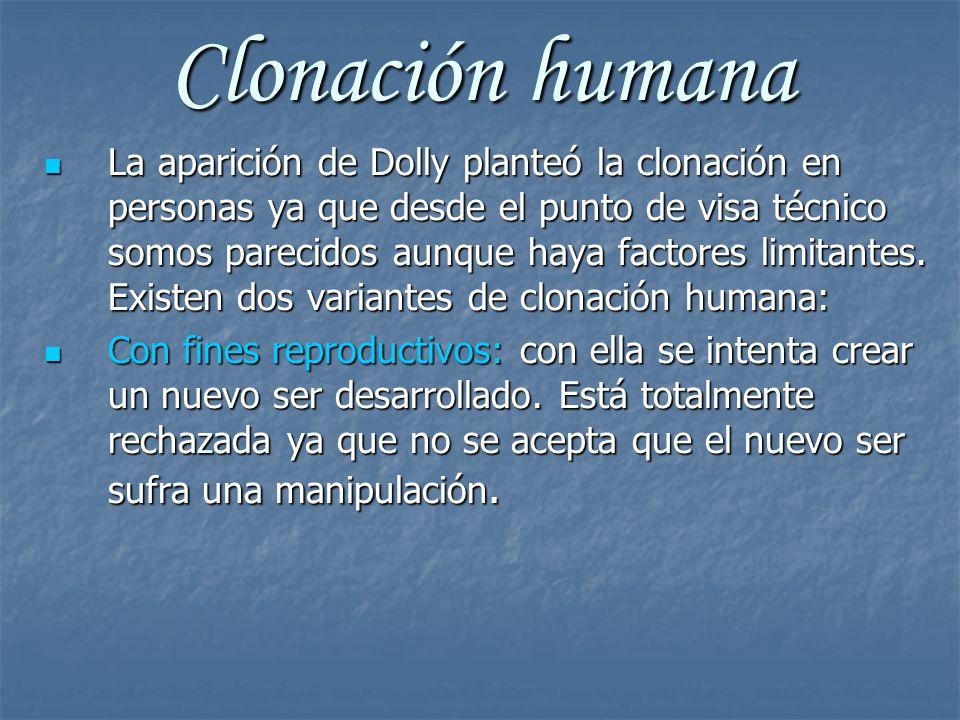 Clonación humana La aparición de Dolly planteó la clonación en personas ya que desde el punto de visa técnico somos parecidos aunque haya factores lim
