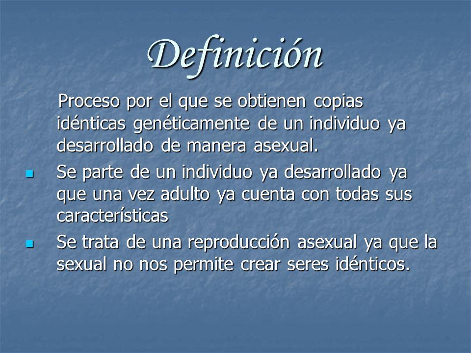 Definición Proceso por el que se obtienen copias idénticas genéticamente de un individuo ya desarrollado de manera asexual. Proceso por el que se obti