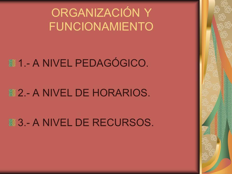 ORGANIZACIÓN Y FUNCIONAMIENTO 1.- A NIVEL PEDAGÓGICO. 2.- A NIVEL DE HORARIOS. 3.- A NIVEL DE RECURSOS.