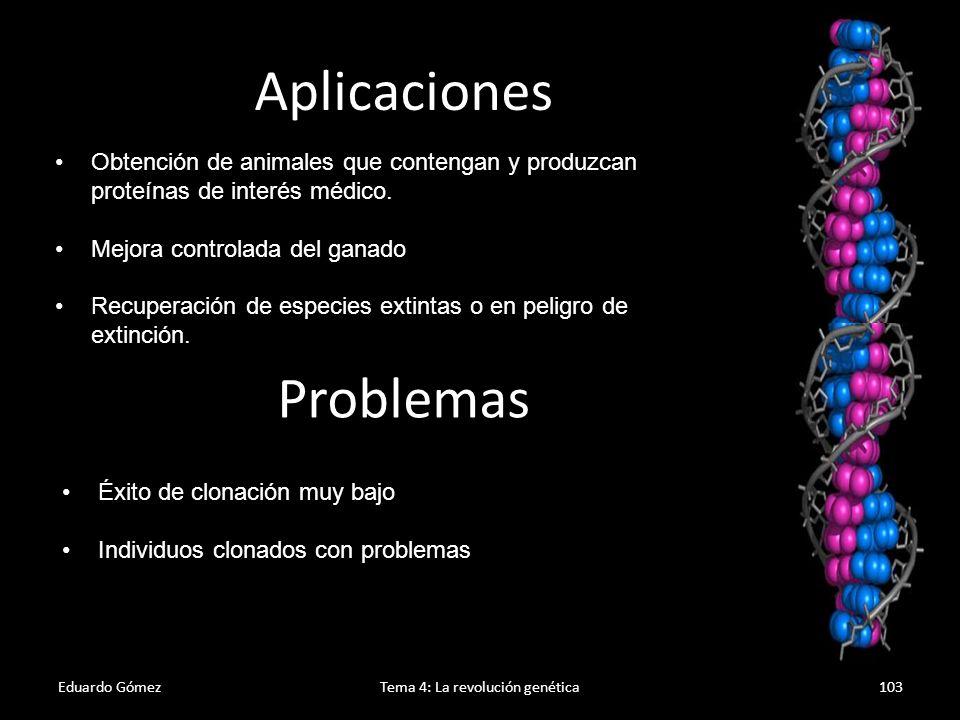 Eduardo GómezTema 4: La revolución genética104