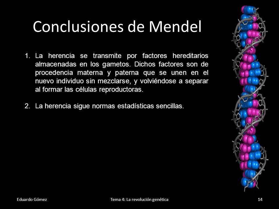 Eduardo GómezTema 4: La revolución genética15 Leyes de Mendel Primera Ley de Mendel o Ley de la uniformidad de los híbridos de la primera generación (F1)., y dice que cuando se cruzan dos variedades individuos de raza pura ambos (homocigotos) para un determinado carácter, todos los híbridos (hereocigotos) de la primera generación son iguales.