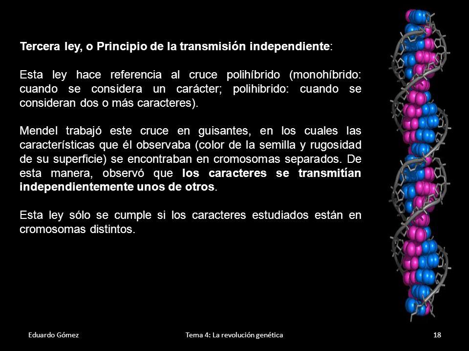 Eduardo GómezTema 4: La revolución genética19