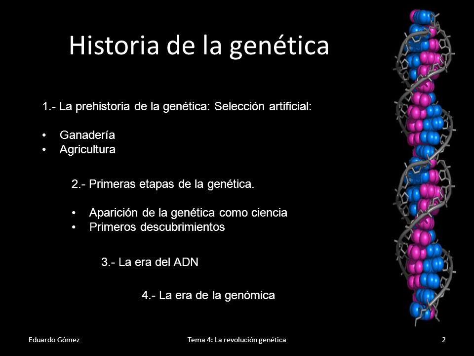 Genética clásica Eduardo GómezTema 4: La revolución genética3 1865: Publicación del artículo de Gregor Mendel Experiments on Plant Hybridization 1869: Friedrich Miescher descubre lo que hoy se conoce como ADN.