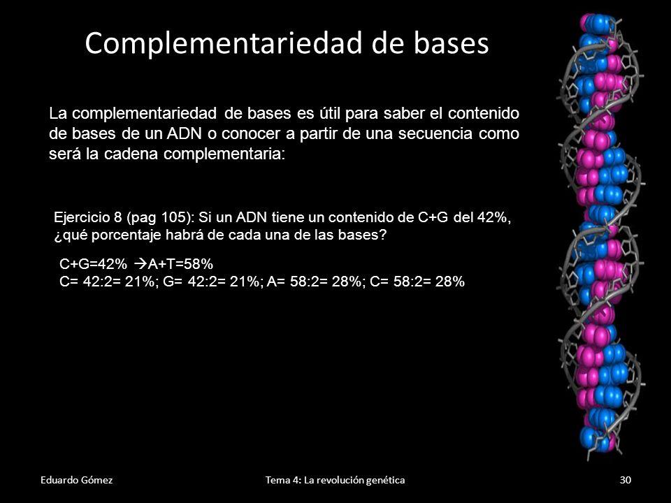 Eduardo GómezTema 4: La revolución genética31 Ejercicio 11 (pag 105): Dada una hebra simple de ADN 3-TACGGAATTCAT-5, construye la hebra complementaria y la cadena de ADN que se formaría tomando como referencia la hebra inicial.