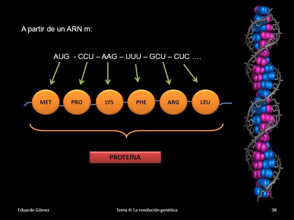 El Código genético Eduardo GómezTema 4: La revolución genética39 1.Es un código universal.