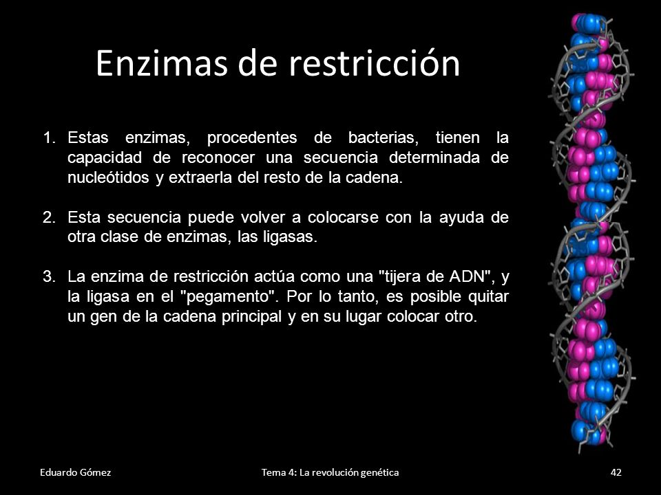 Eduardo GómezTema 4: La revolución genética43