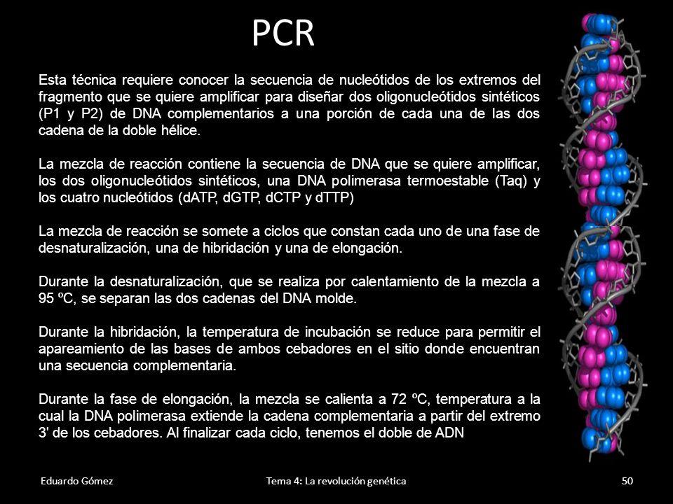 Mutaciones Eduardo GómezTema 4: La revolución genética51 1.Es todo cambio en la información hereditaria (ADN, cromosomas o cariotipo).