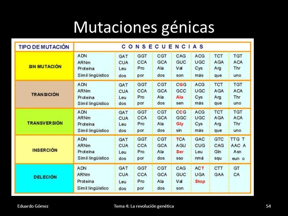 Mutaciones cromosómicas Eduardo GómezTema 4: La revolución genética55