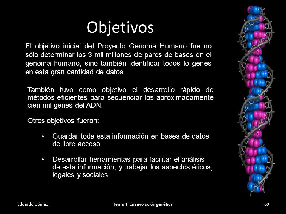Eduardo GómezTema 4: La revolución genética61 Este proyecto supone la realización de dos tipos de mapas: Mapas genéticos: Estos mapas indican la posición relativa de los diferentes genes.