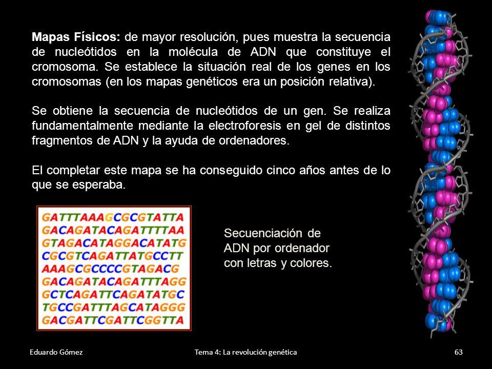 Resultados del PGH Eduardo GómezTema 4: La revolución genética64 Algunos de los aspectos que más han llamado la atención es el bajo número de genes encontrados (en comparación a lo esperado), así como lo repetitivo, similar y duplicado que es el genoma humano.