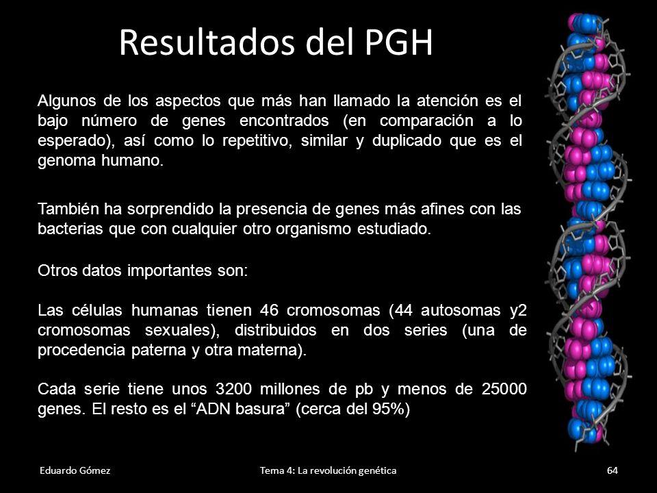 Beneficios Eduardo GómezTema 4: La revolución genética65 1.Prevenir y curar enfermedades hereditarias.